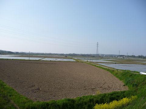 二ツ屋地区の田植前の水田地帯です。