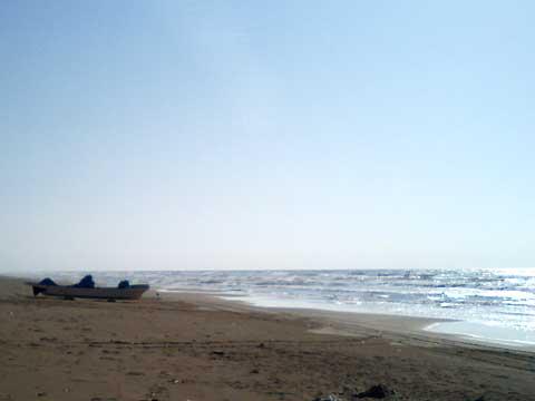 太陽をきらきらと反射させている海面