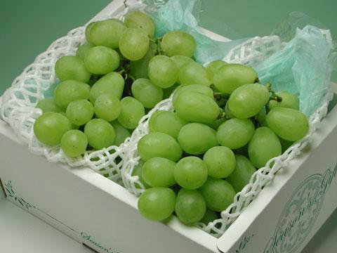 甘い大粒葡萄のロザリオ・ビアンコです