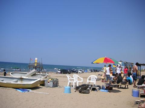 浜辺はバーベキューとビールです