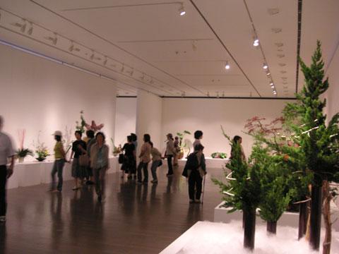 金沢21世紀美術館で開催中の『北國花展』