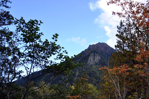 木々の間からも雄大な山が