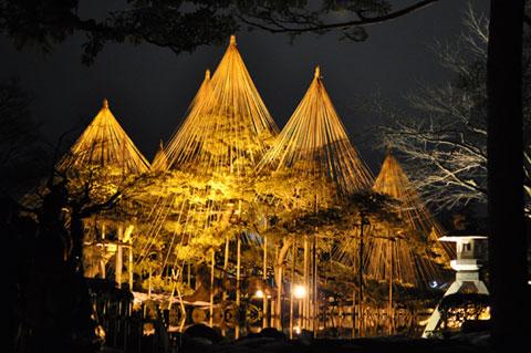 金沢・兼六園 夜間の雪吊りライトアップ