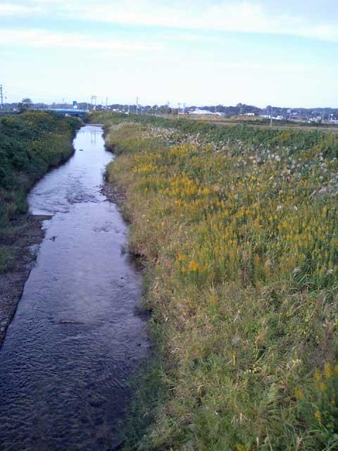 近所を流れる大海川(おおみがわ)です。 夏場は鮎釣りで賑わいます。