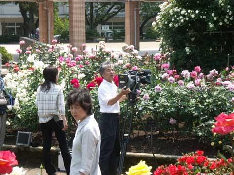 NHKのテレビカメラマンとアナウンサー