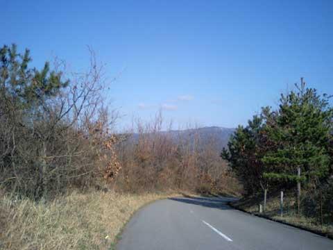 宝達山を正面にした最高の散歩コースです