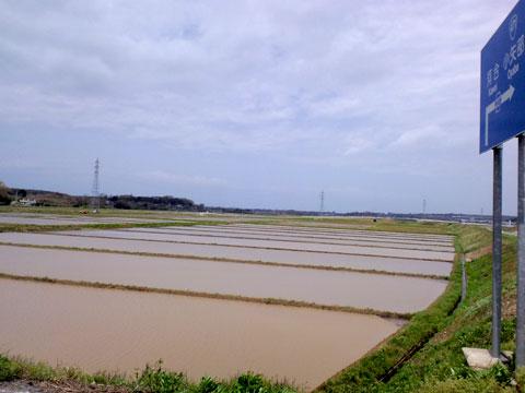 田植え前の中沼地区の水田