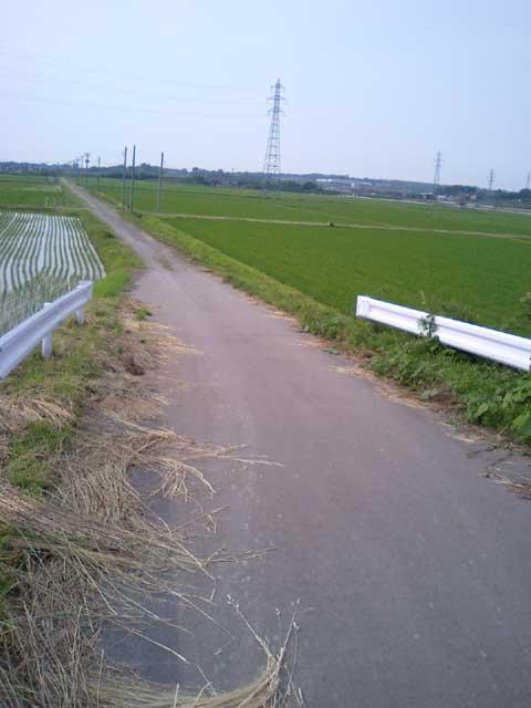tannbo-road.jpg