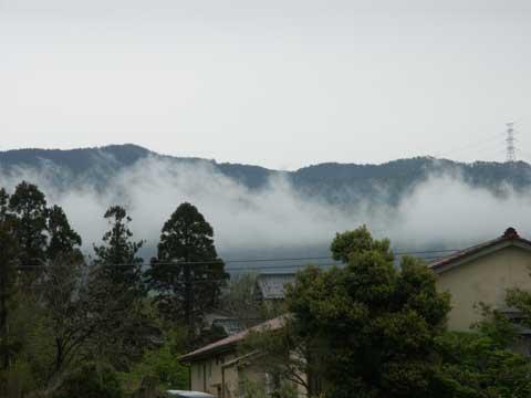 雨が上がっている間にパチリ! 宝達山中腹からの立ち上るガス